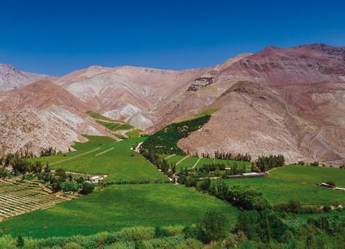 Valle del Elqui, La Serena - CHILE