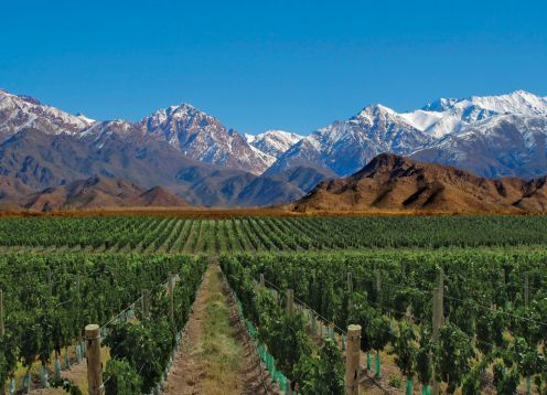 Valle de Uco, Mendoza - ARGENTINA