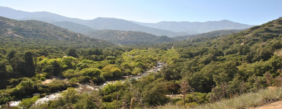 Reserva Nacional R�o Clarillo