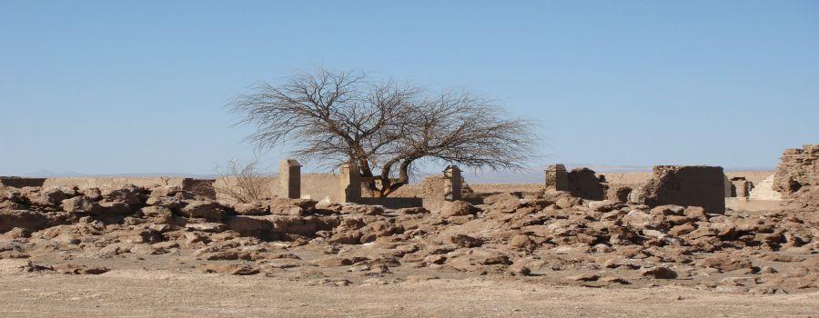 Ruinas del Pueblo de Pampa Union