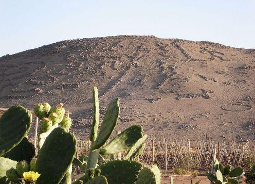 Valle de Azapa, Atractivos Tur�sticos en Arica