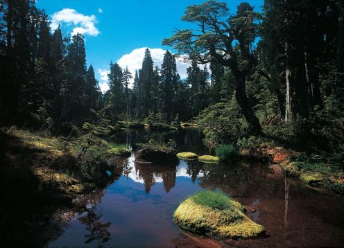 Parque Nacional Hornopiren
