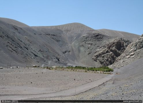 Viña del Cerro en Copiapo