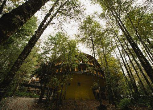 Hotel Reino Fungi