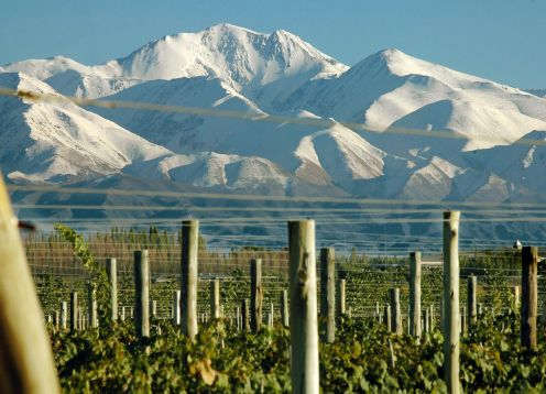 Tour del Vino Valle de Uco, Mendoza