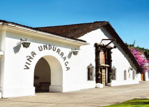 TOUR DEL VINO VIñA UNDURRAGA. ,