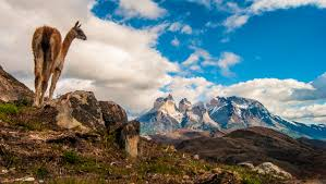 Historia de Torres del Paine