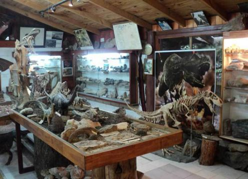 Museo de Geolog�a y Paleontolog�a Dr. Rosendo Pascual
