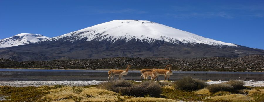 Volcan Parinacota Arica, CHILE