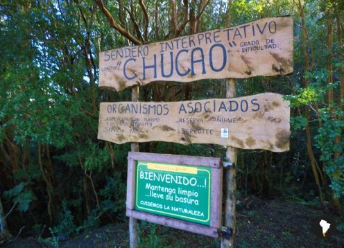SENDEROS DEL CHUCAO - TREKKING / CANOPY. ,