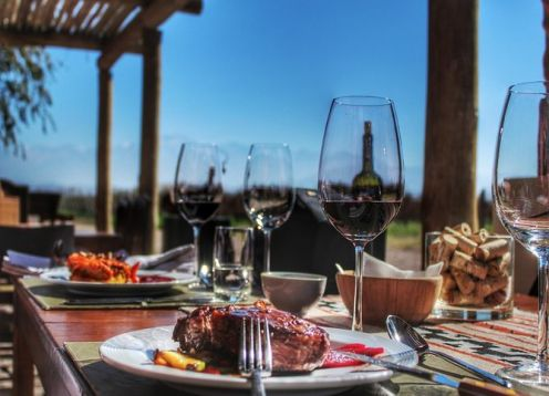 Full day luxury wine tour with gourmet lunch.. Mendoza, ARGENTINA