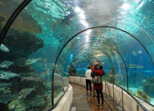 Museum of Tomorrow and the largest aquarium in South America AquaRio. Rio de Janeiro, BRASIL