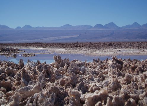 LAGUNAS ALTIPLANICAS -SALAR DE ATACAMA . San Pedro de Atacama, CHILE