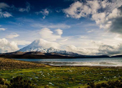 LAUCA NATIONAL PARK / CHUNGARA LAKE. Arica, CHILE