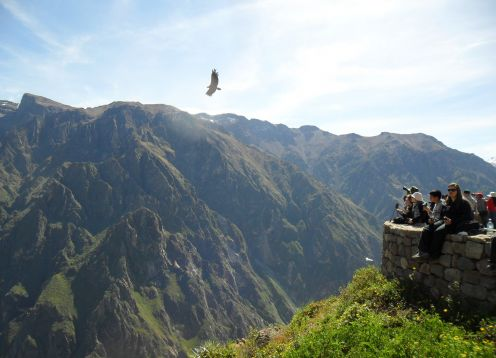 Full day tour to Colca Canyon. Arequipa, PERU