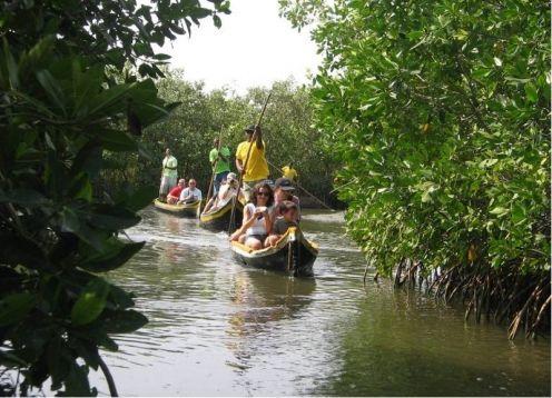 Tour por los manglares de Boquilla. Cartagena de Indias, COLOMBIA