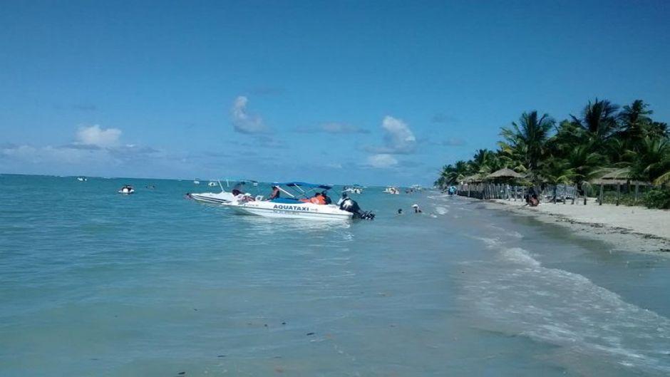 One day trip to Praia dos Carneiros from Boa Viagem, Pina or Piedade- Con Navegacion. Recife, BRAZIL
