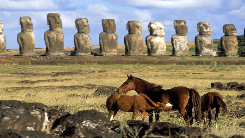 FULL DAY TOUR - ISLA DE PASCUA - Isla de Pascua, CHILE